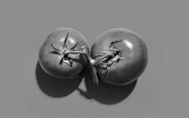 A Tomato Is A Fruit: Why Rules And Processes Have Their Limits